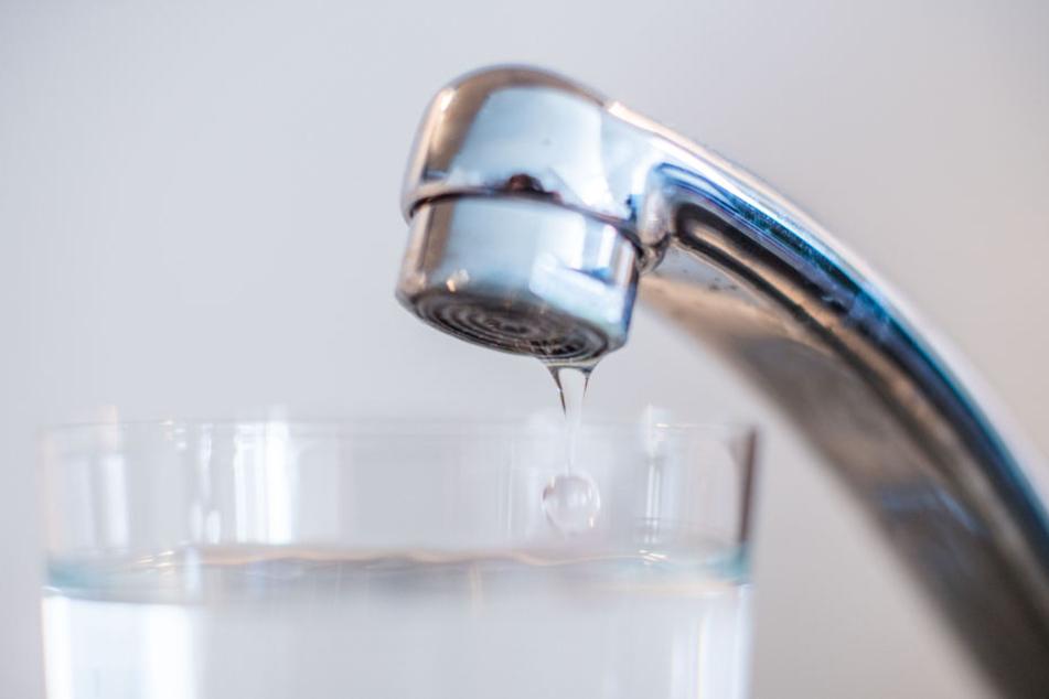 Wegen Hitze und Trockenheit: Das Wasser wird knapp
