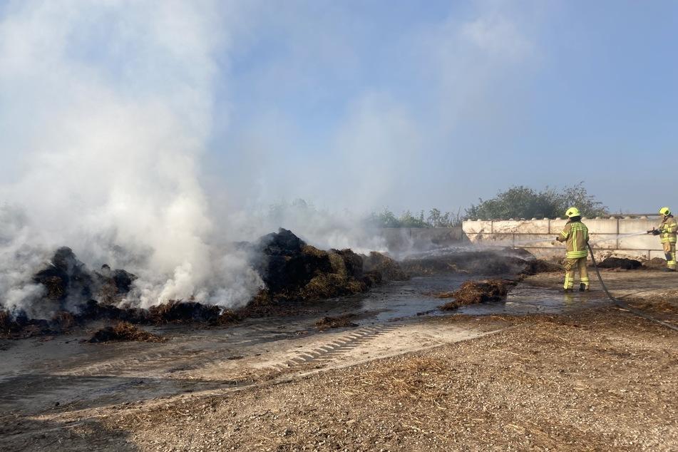 Ein Misthaufen hatte Feuer gefangen. Die Feuerwehr löschte den Schwelbrand.