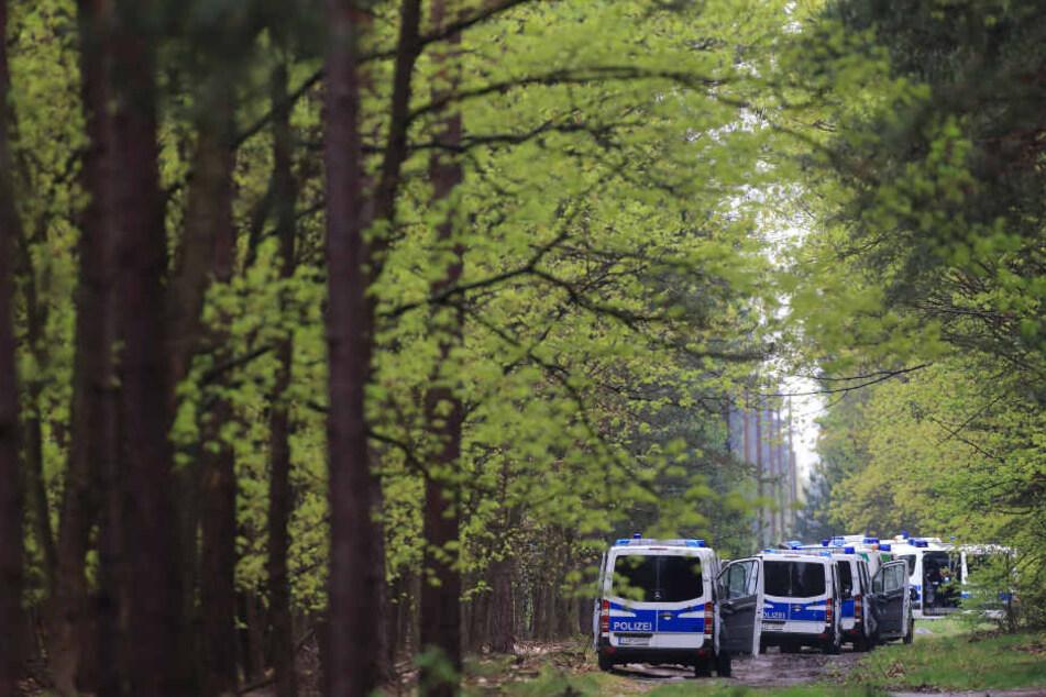 Einsatzkräfte der Polizei durchsuchten ein Waldgebiet bei Stendal (Sachsen-Anhalt) - erfolglos.