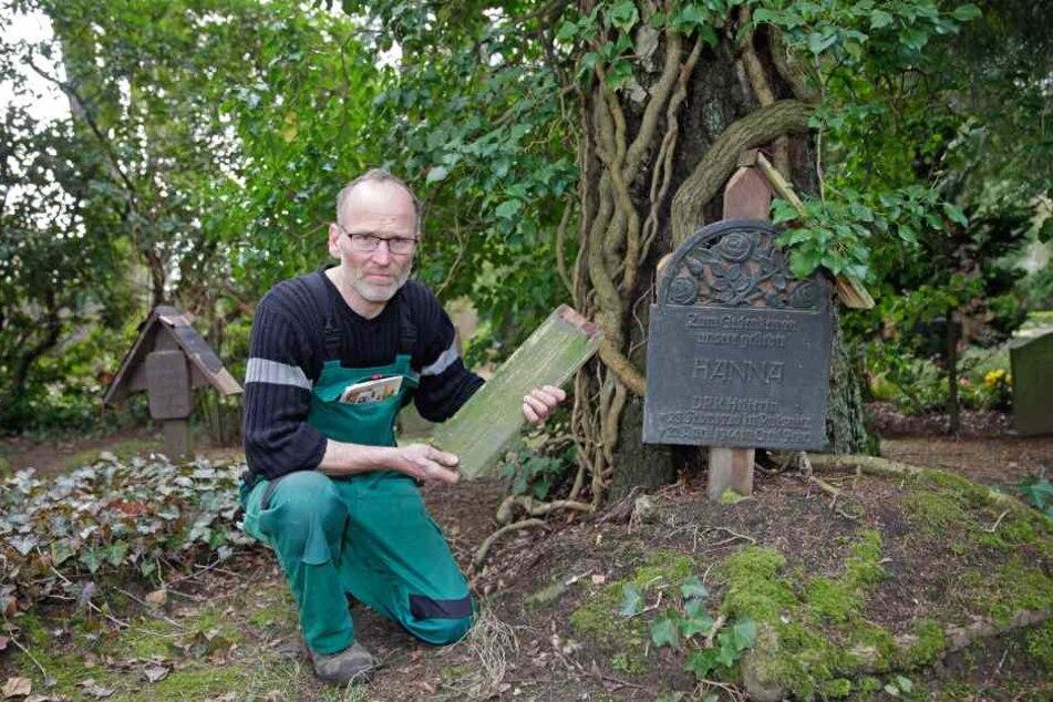 Friedhofsmeister Axel Böhme ist von der massenhaften Grabschändung entsetzt.