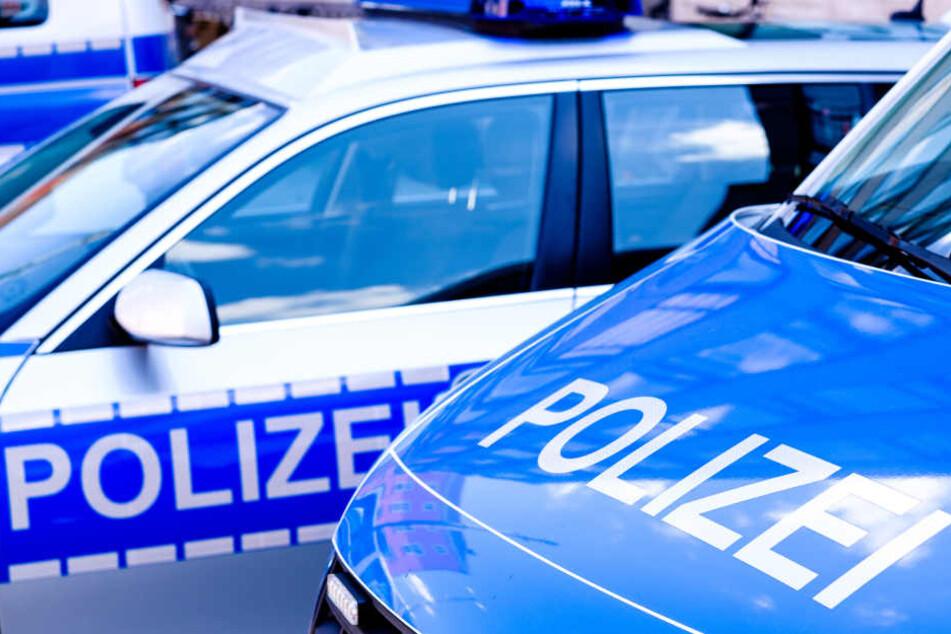 Am Streifenwagen entstand ein Sachschaden in Höhe von mehreren tausend Euro (Symbolbild).