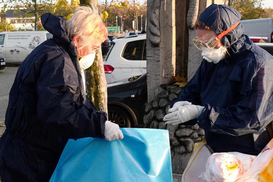Mitarbeiter des Veterinäramtes sammeln bei Leipzig Vogel-Kadaver ein.