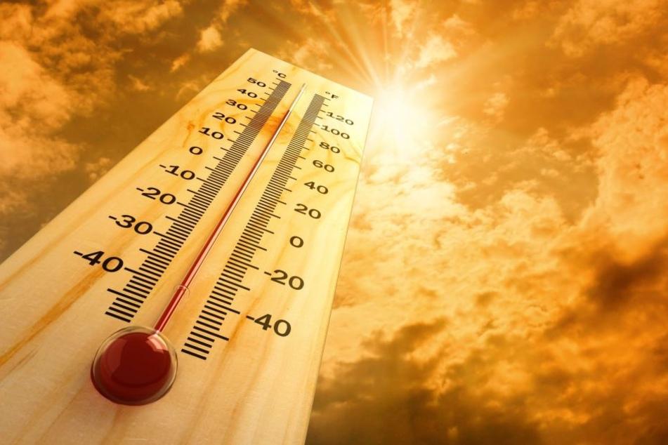 Das Thermometer soll am DIenstag auf 36  Grad Celsius steigen.