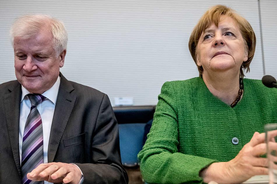 Horst Seehofer muss liefern, Angela Merkel hat aber ihre eigenen Vorstellungen von Asylpolitik.