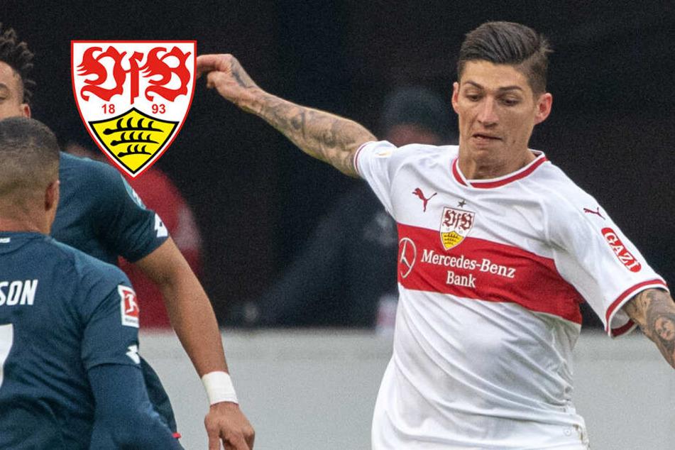Bleibt Steven Zuber beim VfB? Er ist der Denker und Lenker