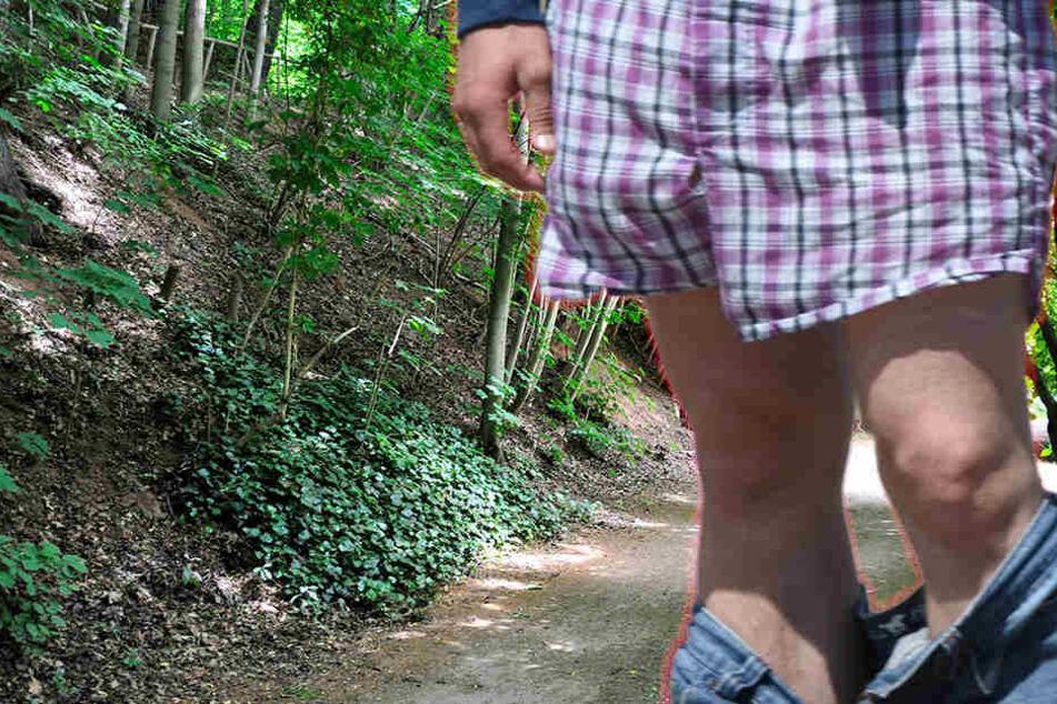 Der Mann stand mit heruntergelassener Hose an einem Gebüsch im Park. (Symbolbild)