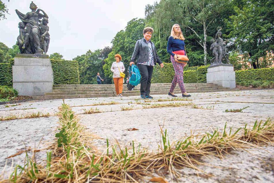 Unkraut und kaputte Treppen bei den Schillingschen Figuren fallen auch den Touristen auf.