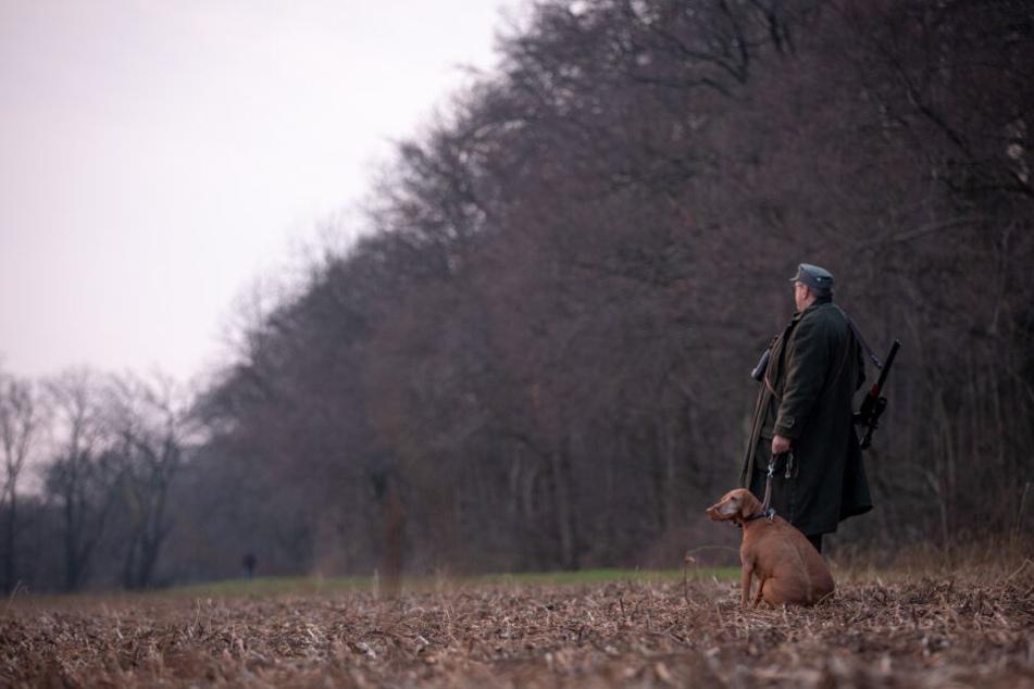 Jäger dürfen Rehe, Hirsche und Gämse nun auch außerhalb der Jagdzeiten schießen. (Symbolbild)