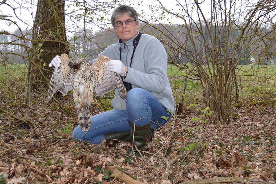 Der Nabu-Kreisvorsitzende Ludger Frye posiert mit einem toten Vogel.