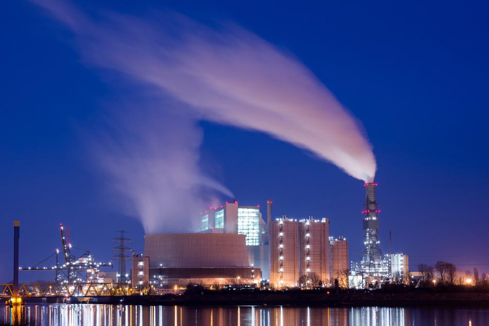 Dampf und Rauch steigen aus den Kühltürmen und Schornsteinen des Kohlekraftwerk Moorburg. (Archivbild)