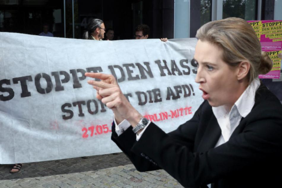 Schwänzt AfD-Politikerin Alice Weidel (39) die Demo ihrer eigenen Partei?