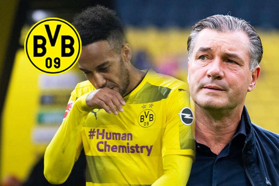 """BVB-Stress wegen Aubameyang geht in die nächste Runde: """"Im Ton vergriffen""""!"""