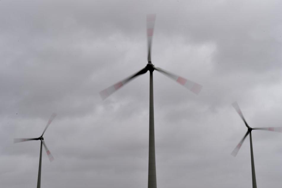 Um das Netz zu entlasten, drosselte die Mitnetz Strom im vergangenen Jahr 261 Mal die Stromerzeugung aus Erneuerbaren Energien. (Symbolbild)