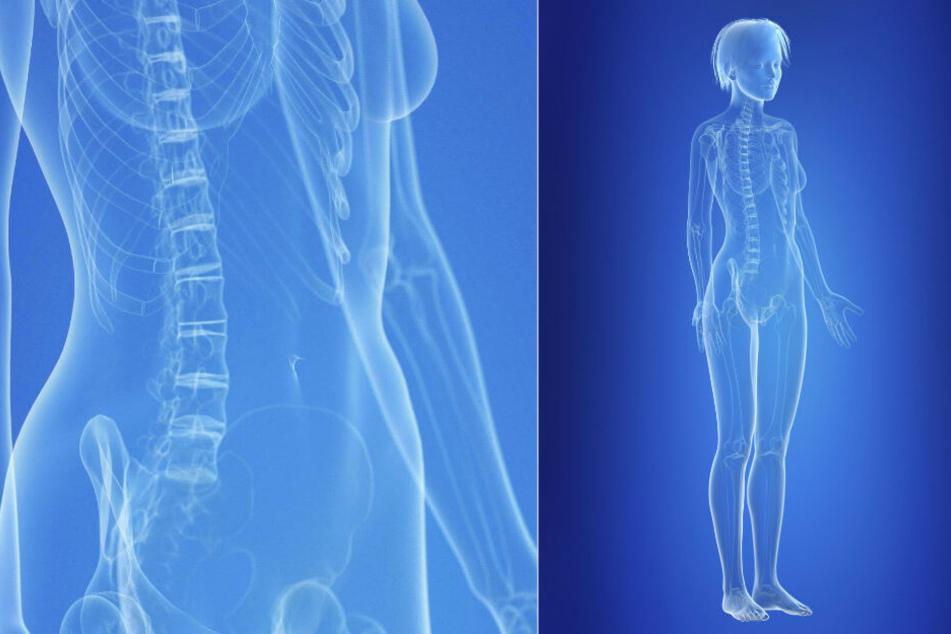 Wirkstoffe verteilen sich im weiblichen Körper anders als bei Männern.