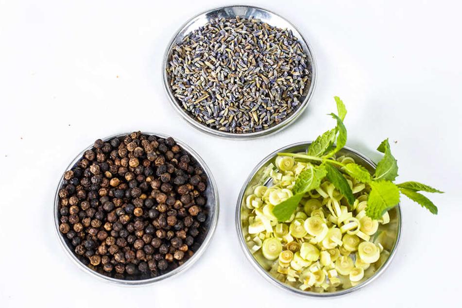 Lavendel, Pfeffer und Zitronengras: Das sind die ersten drei Zutaten für das besondere Tonic.