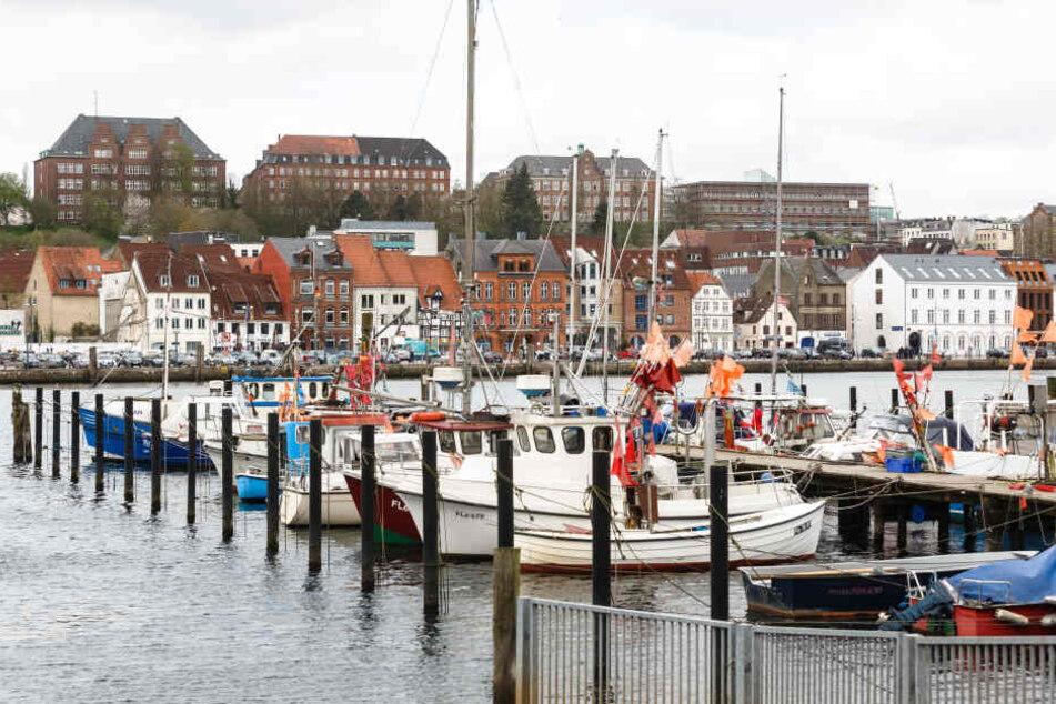 Blick über die Flensburger Förde auf das Westufer der Stadt.