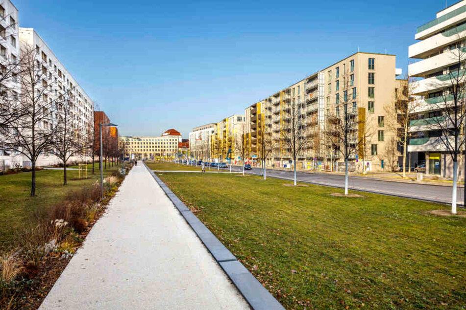 Aktuell ist der Promenadenring zwischen Postplatz und Dippoldiswalder Platz recht kahl.