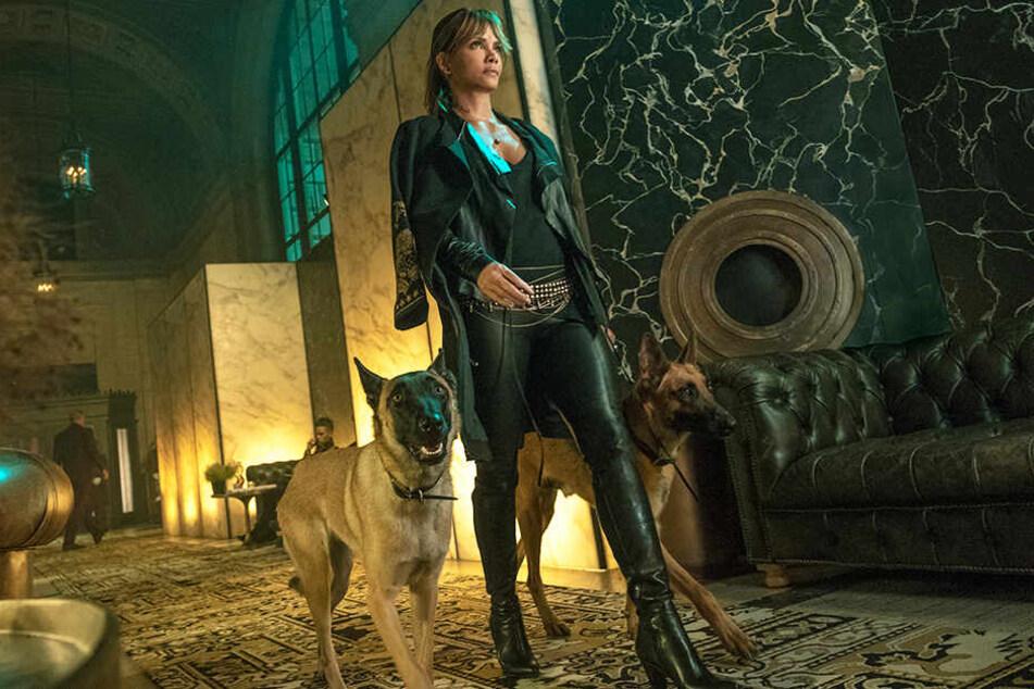 Ist die mysteriöse Sofia (Halle Berry) auf John Wicks Seite?