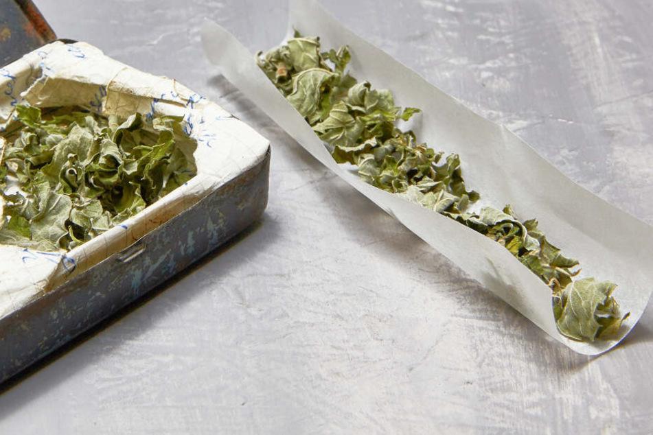 Fast 3 Millionen Euro an einem Tag: Krasser Umsatz durch legalen Cannabis-Verkauf!