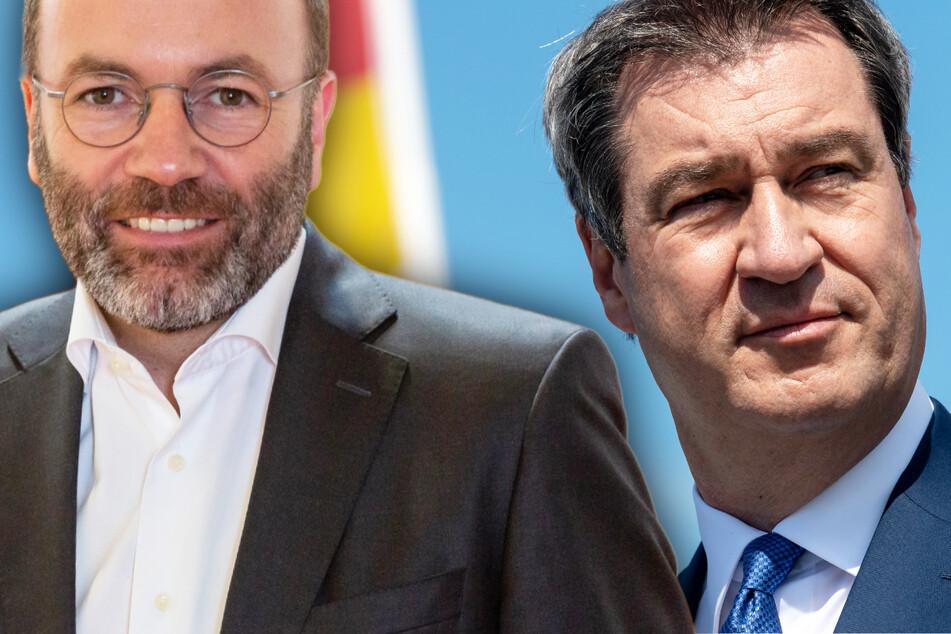 Söder als Union-Kanzlerkandidat? CSU-Vize Weber hat klare Haltung