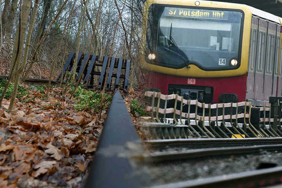 Happy End im Südwesten? Mit der alten neuen Stammbahn nach Potsdam