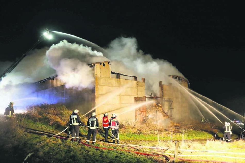 Zwei Tage lang mussten rund 100 Feuerwehrleute diesen Großbrand in Breitenau löschen.