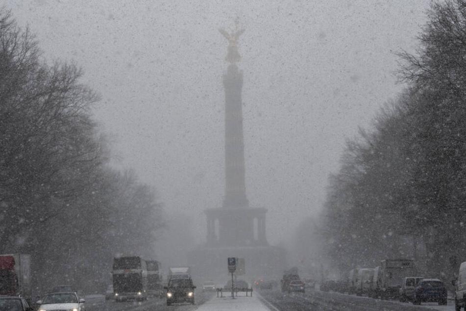 Der Klimawandel ist im vollen Gange. In Berlin soll ein entsprechendes Institut entstehen. (Symbolbild)