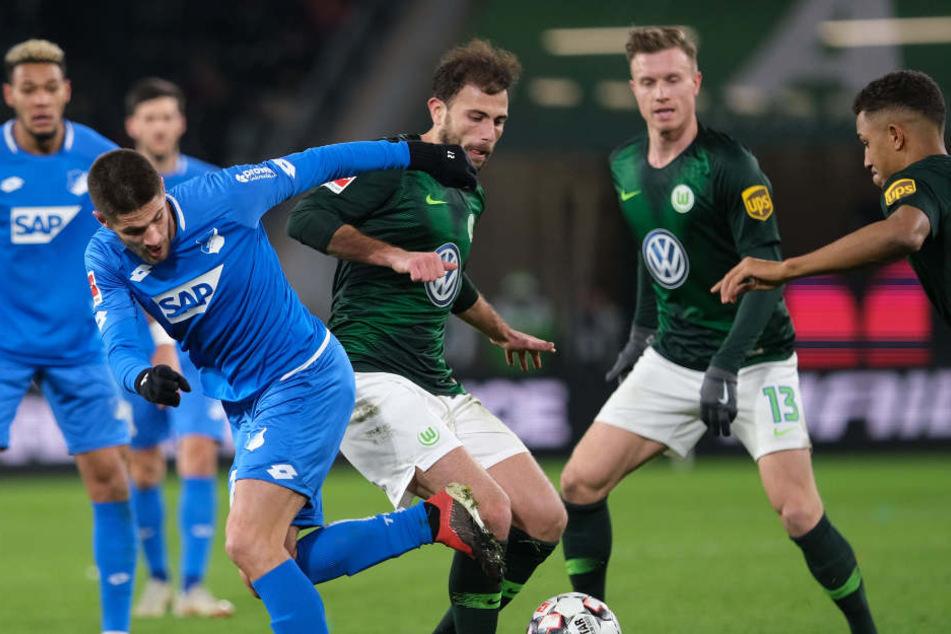 In der Bundesliga seit sieben Spielen ungeschlagen: Gegen den VfL Wolfsburg erkämpften sich die Kraichgauer ein 2:2.