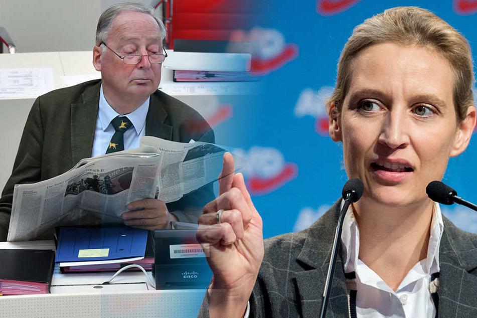 """Die AfD-Bundestagsfraktion will ab April einen eigenen Newsroom starten. Grund sind unter anderem """"Fake News"""" der Medien."""
