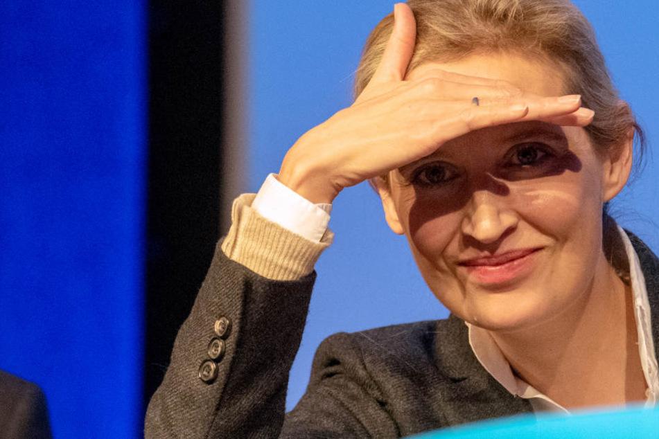 Infolge der AfD-Spendenaffäre: Fraktionschefin Alice Weidel tritt in Ravensburg zum Bürgerdialog an.