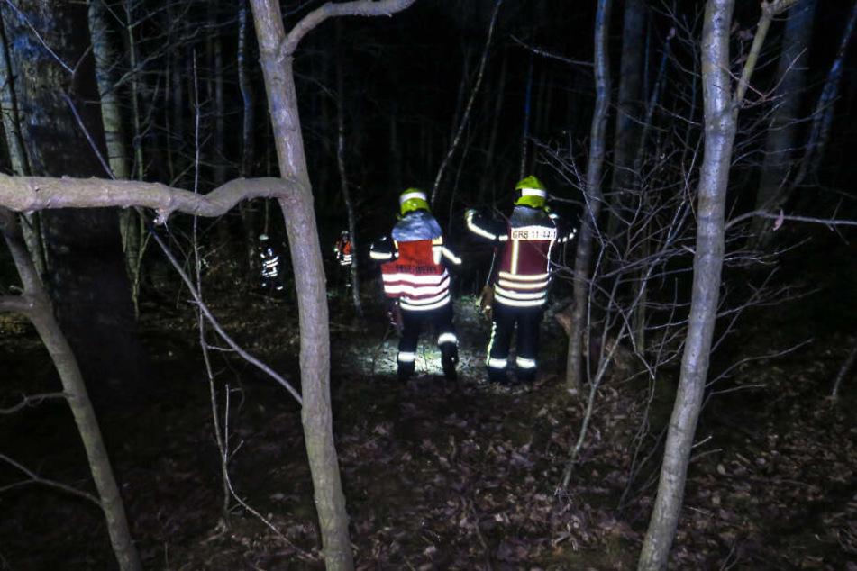 Die Einsatzkräfte suchten mitten in der Nacht ein Waldstück nach dem offenbar verschwundenen Beifahrer ab.