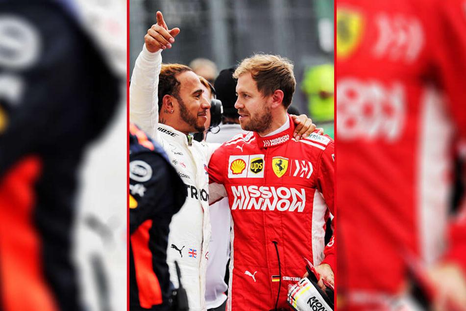 Rivalen in der Formel 1: Lewis Hamitlon (l., 34) und Sebastian Vettel (r., 31)