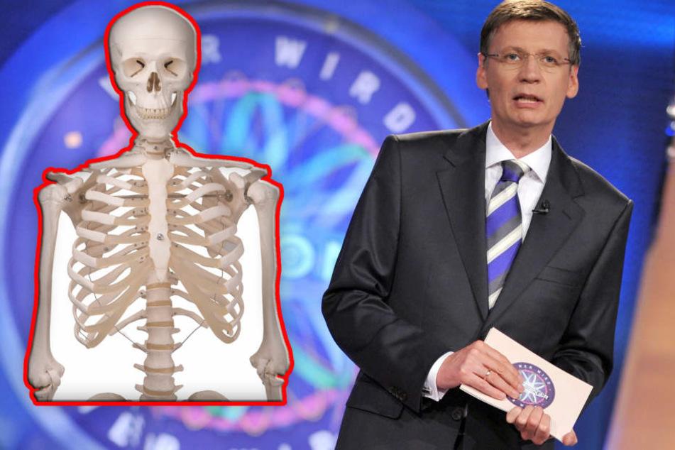 """""""Kleiner blonder Idiot"""" räumt bei WWM ab und will sich Skelett kaufen"""