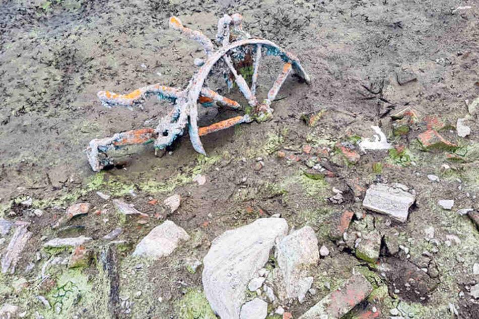 """Auch ein altes Rad hat die """"Ebbe"""" frei gelegt."""