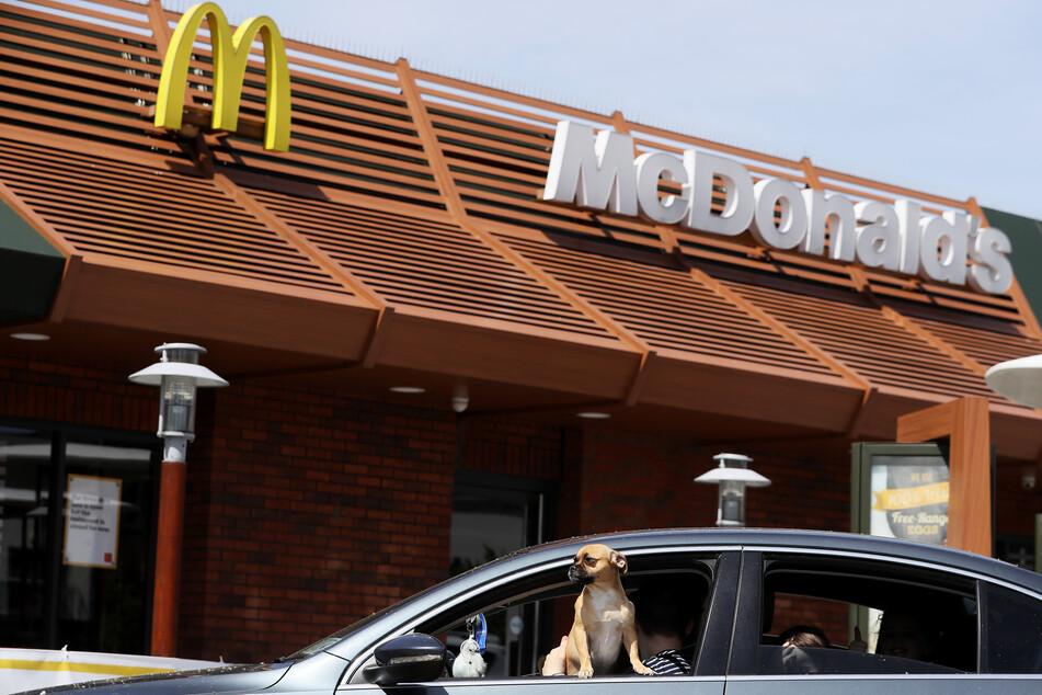 Ein Hund schaut aus dem Fenster eines Autos im Drive-Thru eines irischen McDonald's-Restaurants. (Archivbild)