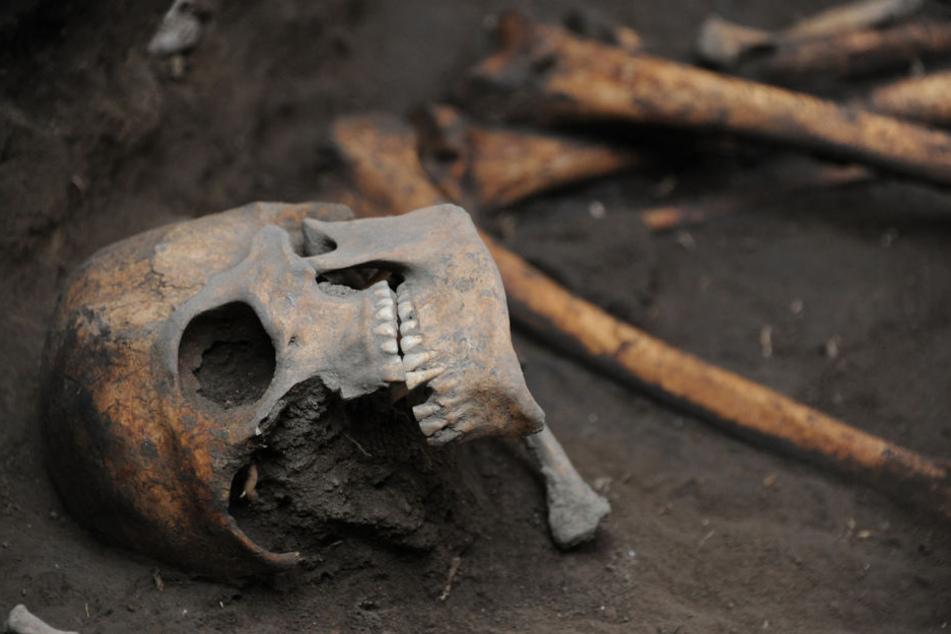 Die Arbeiter fanden am Montag die Knochen von fünf Männern. (Symbolbild)