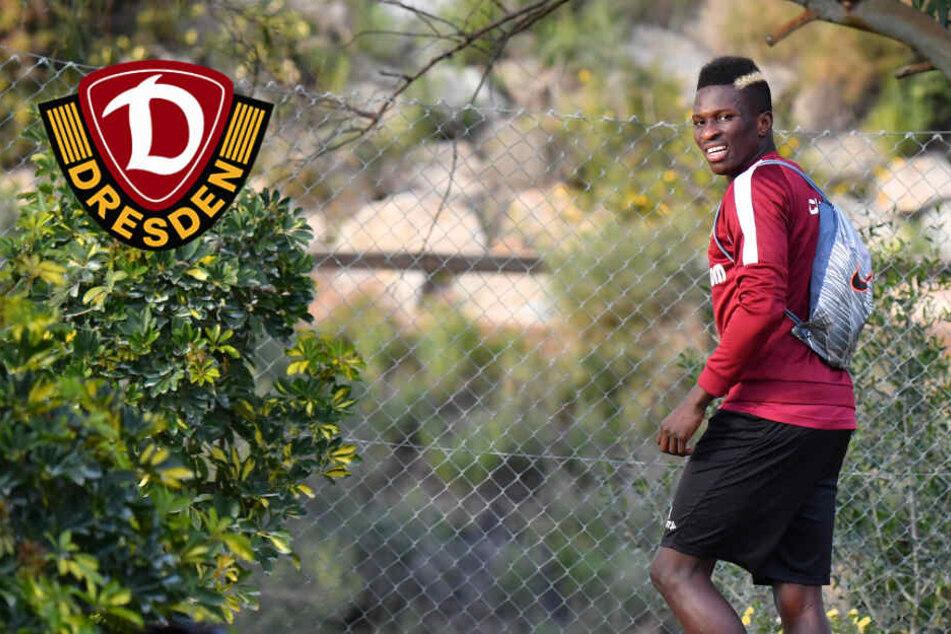 Dynamo: Koné unterschreibt für dreieinhalb Jahre in Nimes