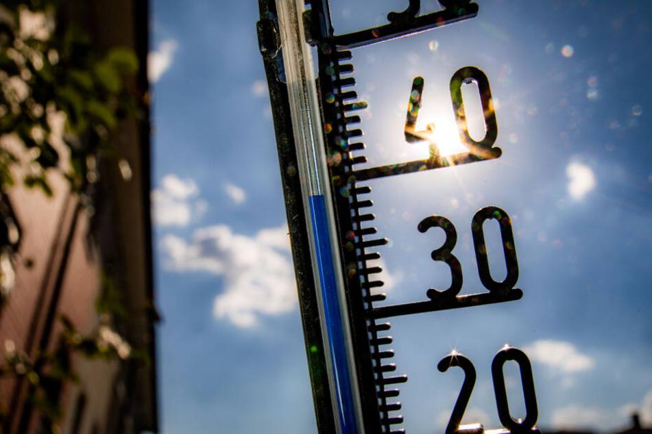 Die Hitzewelle in NRW sorgt auch für steigende und damit gefährliche Ozon-Werte (Symbolbild).