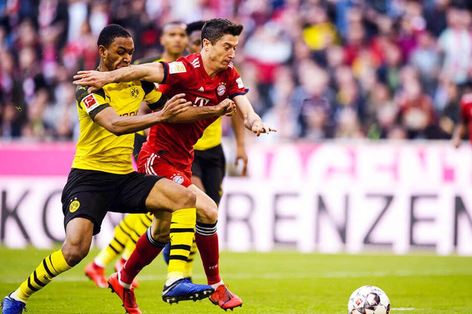 Bayerns Stürmer Robert Lewandowski setzt sich gegen BVB-Abwehrspieler Abdou Diallo durch.