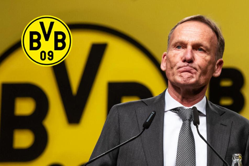 """Brisante BVB-Mitgliederversammlung: """"Schämt euch"""", """"Favre raus""""!"""
