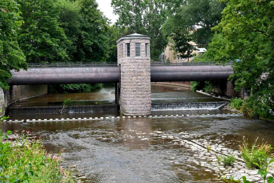 Die Stadt Chemnitz ließt die Graffiti für etwa 2600 Euro entfernen.