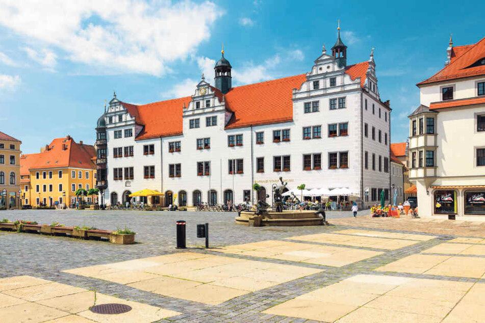 Torgau ist berühmt für seine Schönheit - und bald auch für seine Pilze!?