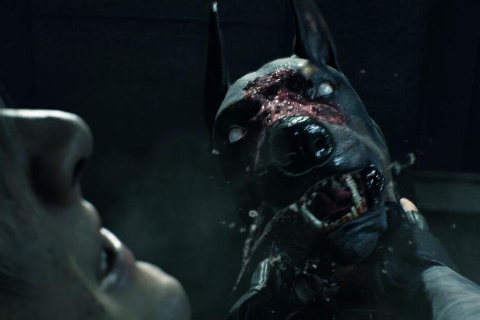 Natürlich dürfen dabei auch die berüchtigten Zombie-Hunde nicht fehlen.