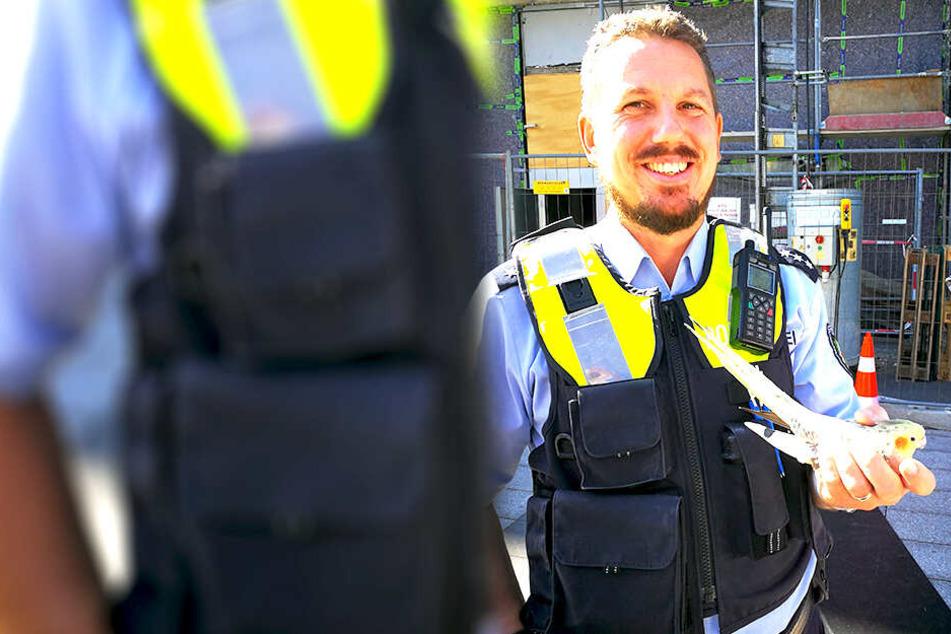 Polizeihauptkommisar Björn Jakulski zögerte nicht und bekam einen Vogel.