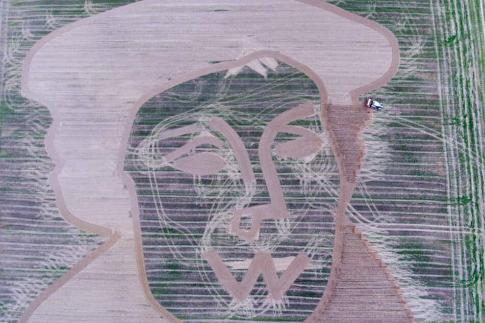 Das überdimensionale Martin Luther Bild ist in der Reformationsstadt Homberg/Efze auf einem Stoppelfeld zu sehen.