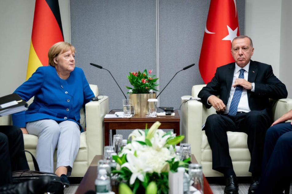 Telefonat mit Erdogan: Merkel fordert Stopp der türkischen Syrien-Offensive