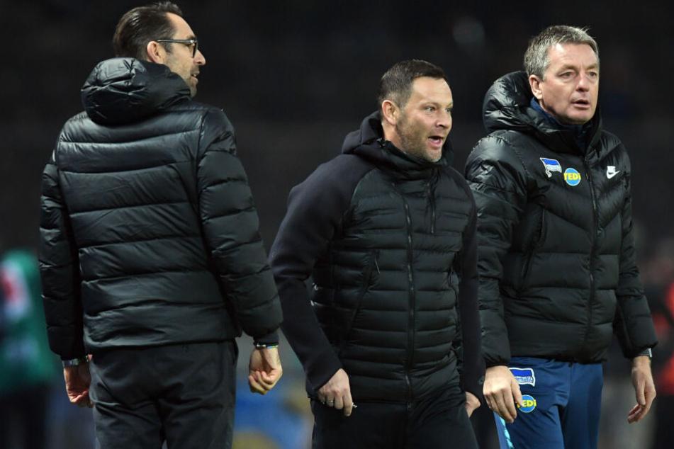 Dieses Trio wird es ab Sommer nicht mehr geben. Manager Michael Preetz (l.), Trainer Pal Dardai und noch Co-Trainer Rainer Widmayer (r.).