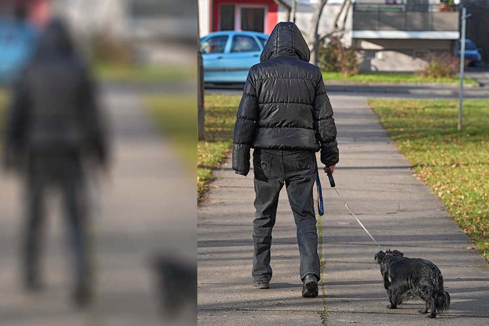 Auf der abendlichen Gassi-Runde wurde der Hund seines 57-jährigen Besitzers überfahren und starb später beim Tierarzt (Symbolbild).