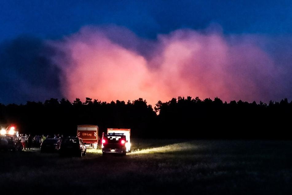 Waldbrände in Brandenburg nicht löschbar: Darum ist die Lage explosiv
