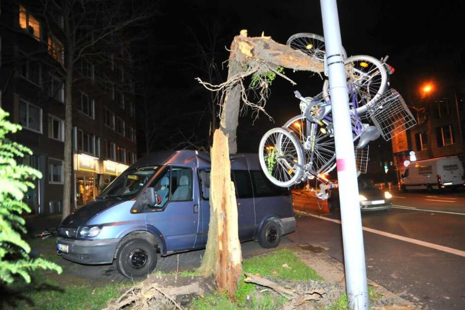 Hier entwurzelte der Sturm einen Baum, der auf ein Auto fiel und angeschlossene Fahrräder in die Luft hob.